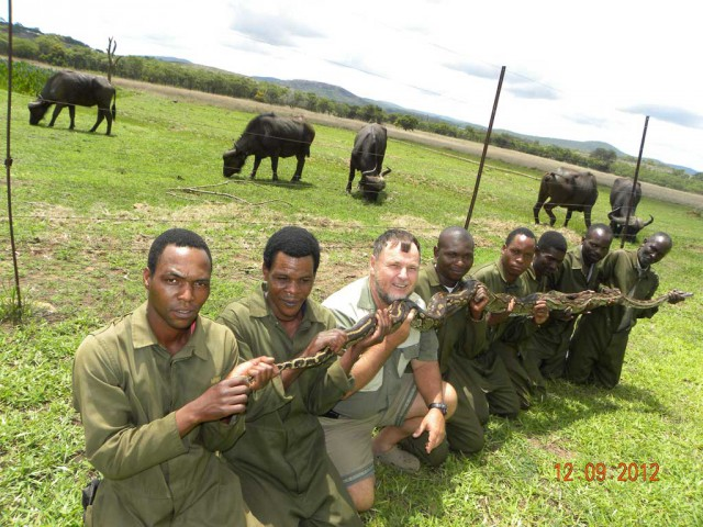Mwanga team with a large python