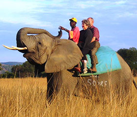 day-safari-elephant-ride
